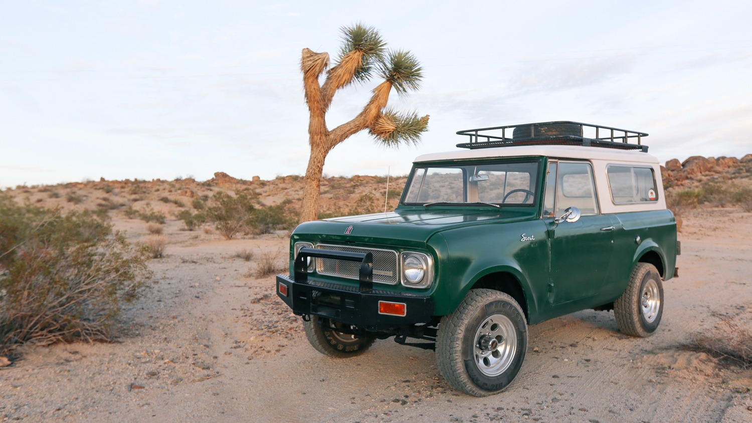 International Scout – The Joshua Tree House – Available for