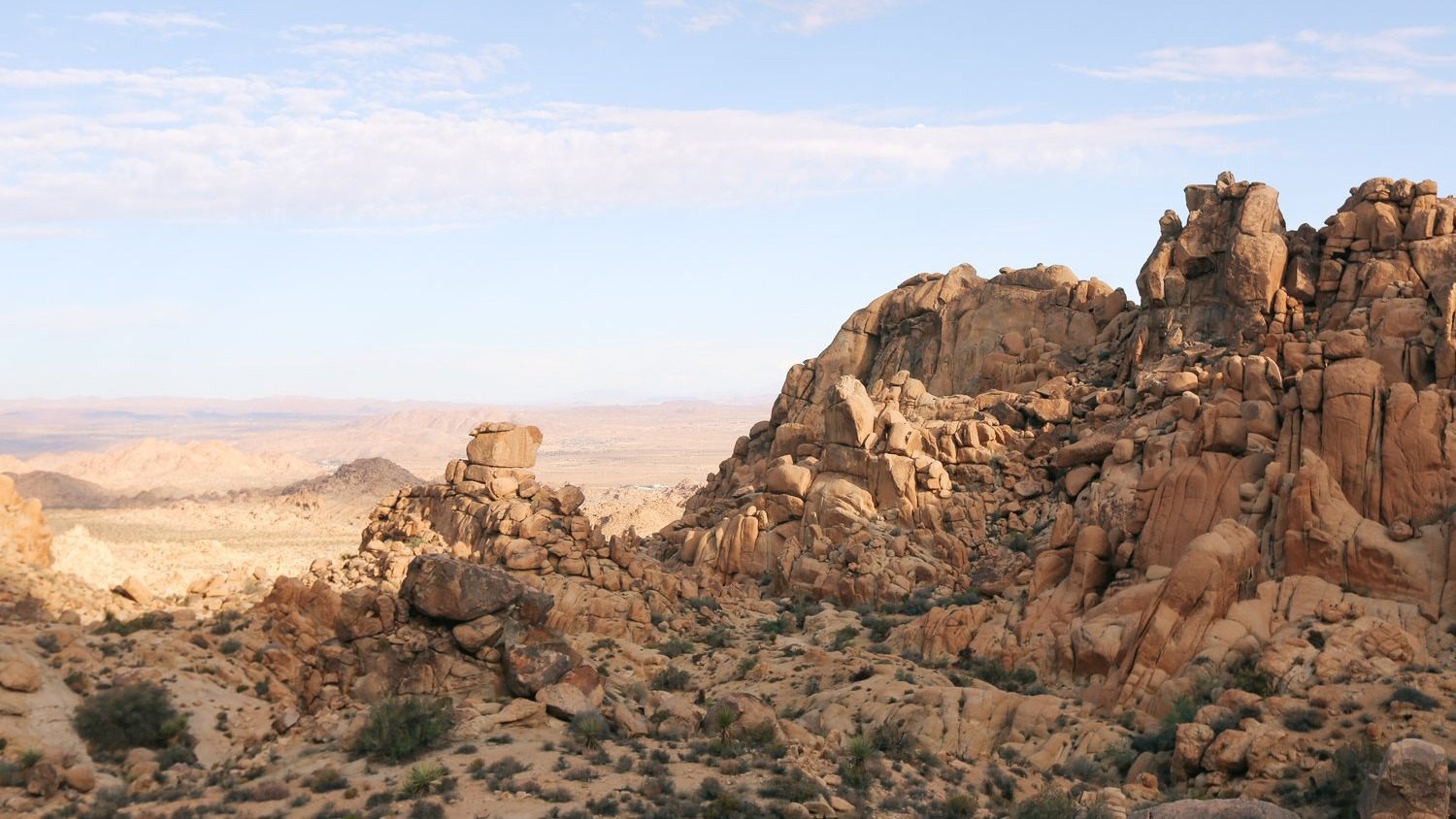 Northview Trail at Joshua Tree National Park